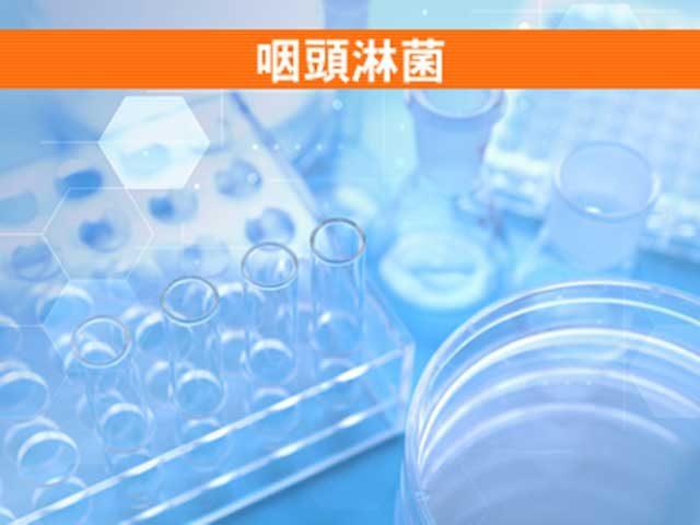 咽頭淋菌検査
